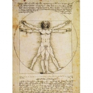 (6105) Vitruvian Man - 204 pcs