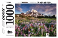 [8809] Mount Rainier National Park, Washington State - 1000 peças