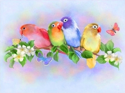 [9187] Pintura com Strass - Birds in Color - 20x25 cm - full